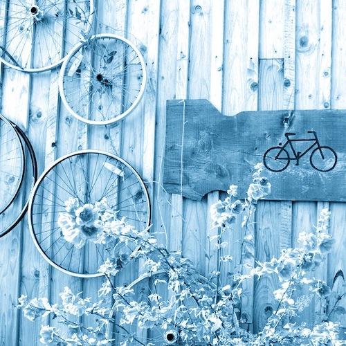 English Language School Scotland activities menu cycling at Comrie Croft