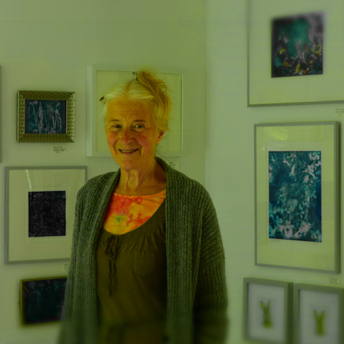 Perthshire Artist Kathy Collins in her studio Artist Guest Speaker on Blue Noun English Language holiday English for Creatives