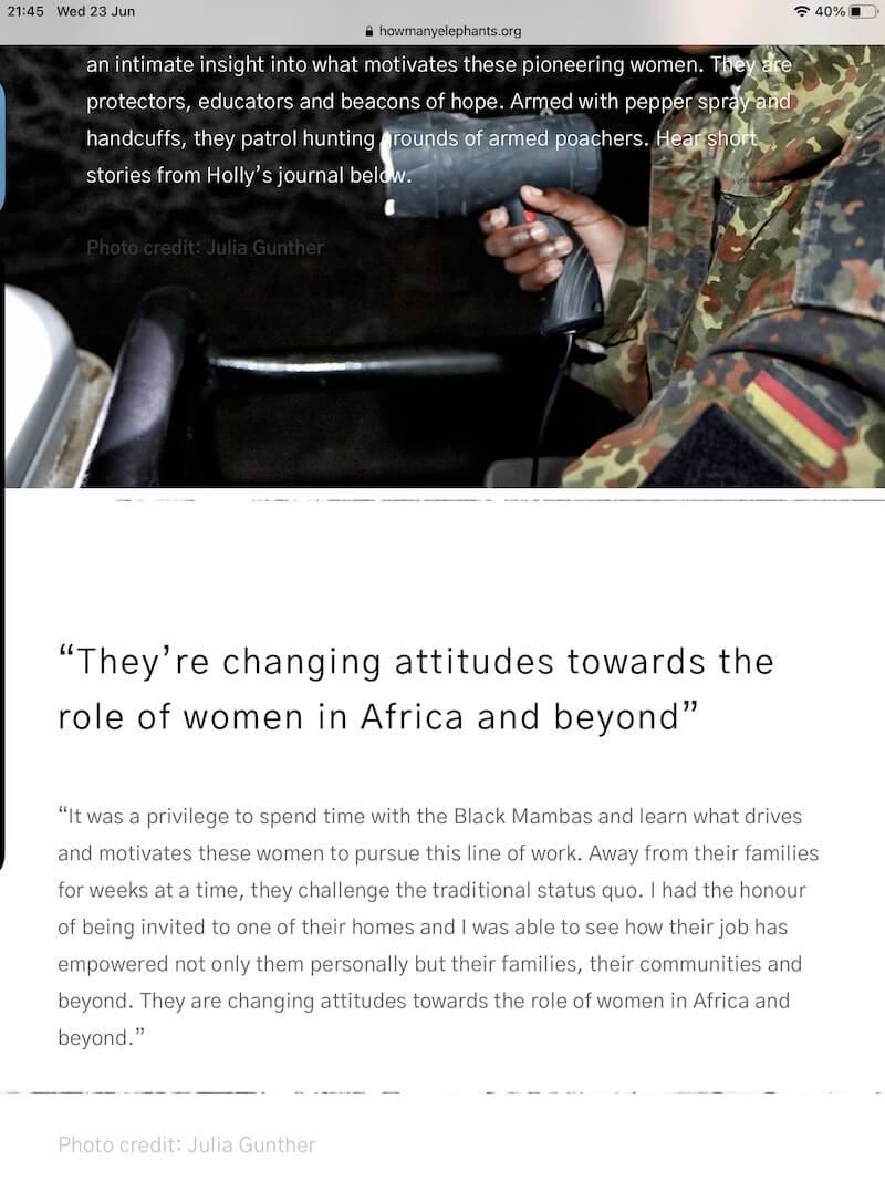 English language skills for creatives How Many Elephants World Female Ranger Day