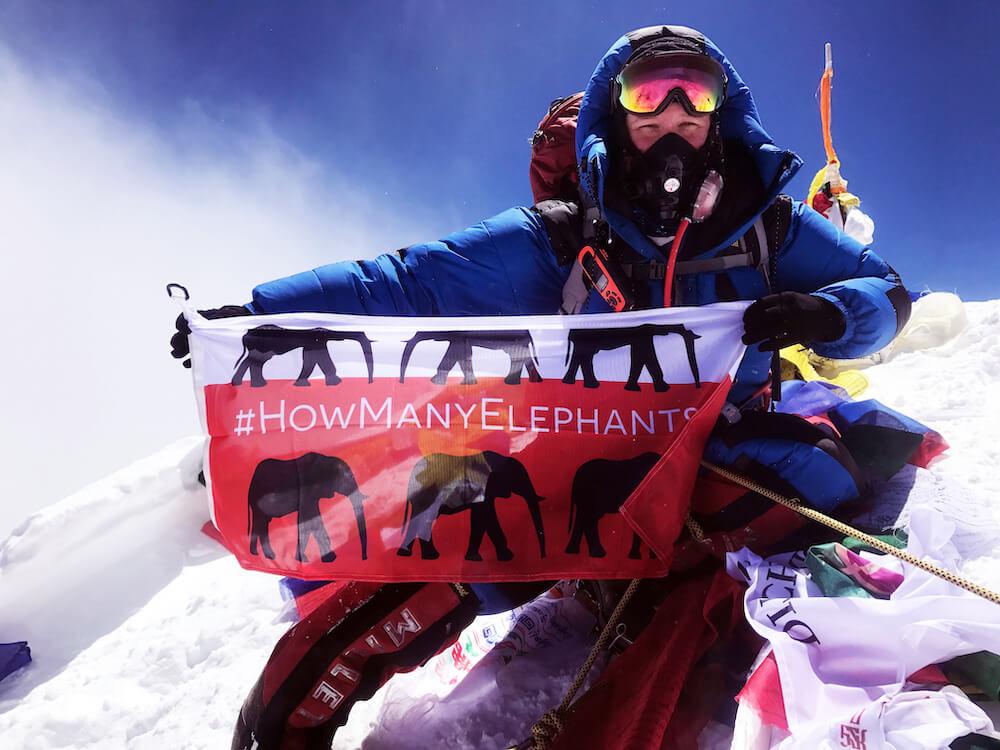 English for designers  English language skills for creatives Everest Summit